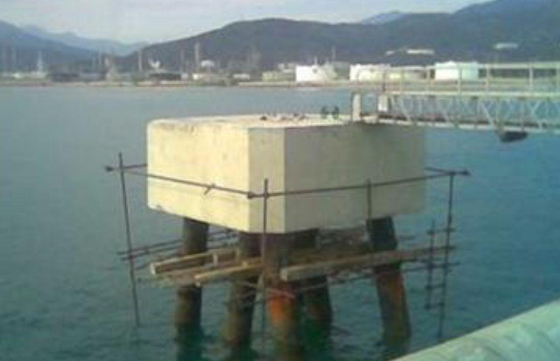 Muelle de la Refinería el Palito -8
